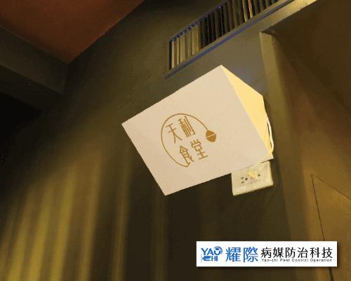 客製化捕蟲燈_天利食堂