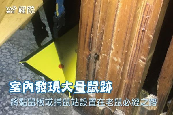 台中市西區西餐廳蟑鼠防治05蟑鼠防治-室內設置黏鼠板web