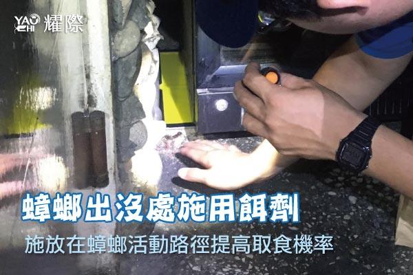 台中市西區西餐廳蟑鼠防治06蟑鼠防治-施用蟑螂餌劑web