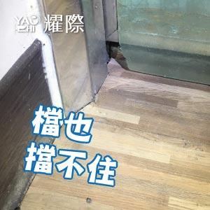 工廠有老鼠該如何處理02工廠老鼠的危害-破洞web