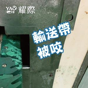 工廠有老鼠該如何處理02工廠老鼠的危害-磨牙web