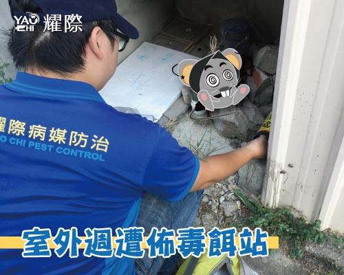 工廠有老鼠該如何處理04工廠老鼠防治施工-投放老鼠藥web