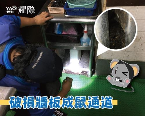 工廠有老鼠該如何處理04工廠老鼠防治施工-現成老鼠通道web