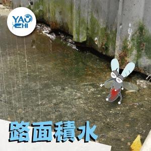 冬天蚊子要如何消滅01路面積水