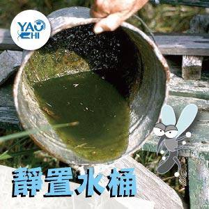 冬天蚊子要如何消滅01靜置水桶