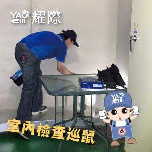 台中滅鼠專業團隊02工廠內部檢查巡鼠