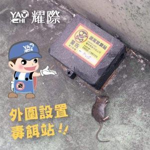 台中滅鼠專業團隊02工廠外圍防鼠措施