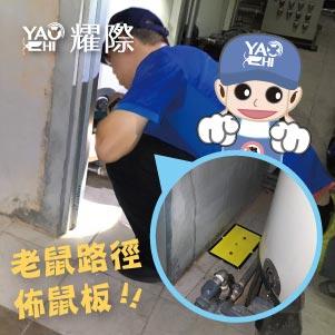 台中滅鼠專業團隊02工廠黏鼠板擺放技巧