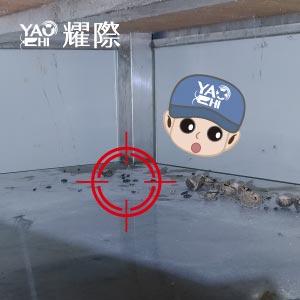 如何判斷家裡有老鼠02貨架上有老鼠屎