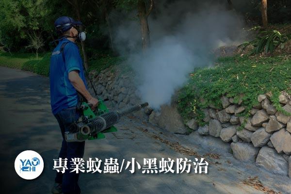 蚊蟲防治介紹-專業蚊蟲小黑蚊防治3